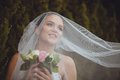 Bride portrait over green trees outdoor beautiful closeup under veil Royalty Free Stock Photography