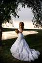 The bride at the riverside under the arch of branches, back view Stock Photography