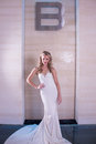 The bride a series of wedding dresses and models Royalty Free Stock Photography