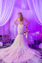The bride a series of wedding dresses and models Stock Photos