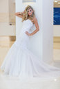 The bride a series of wedding dresses and models Royalty Free Stock Images
