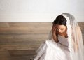 Bride and Veil Royalty Free Stock Photos