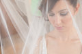 Bride veil portrait beautiful with Royalty Free Stock Photo