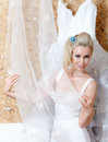 The bride and wedding dress beautiful woman with a veil a Stock Photos