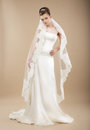 Bride in Wedding Dress and Veil Royalty Free Stock Photo