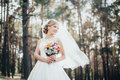 The bride in a white dress Royalty Free Stock Photo