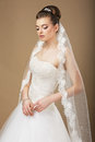 Bride with white veil in reverie young romantic newlywed Royalty Free Stock Photos