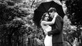 Brides couple gently kissing under an umbrella in the park Stock Images