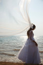 Brides silhouette with flying veil Royalty Free Stock Photo