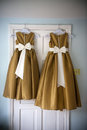 Bridesmaids dresses Royalty Free Stock Image