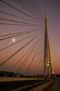 Bridge ada in belgrade cable serbia Royalty Free Stock Photo