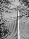 Bridge the ada serbian мост на а и most na adi or alternatively sava is a cable stayed over the sava river Stock Photography