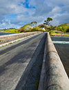 Bridge at Ardmore bay Royalty Free Stock Photo