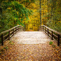 Bridge in autumn forest wooden the Royalty Free Stock Images