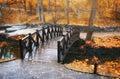 Bridge in autumn park Royalty Free Stock Photo