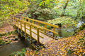 Bridge in autumnal forest Royalty Free Stock Photo