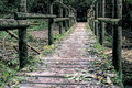 Bridge on a Black Forest hiking trail through the Wutachschlucht, Germany Royalty Free Stock Photo