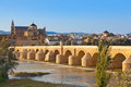 Bridge at cordoba spain nature and architecture background Stock Images