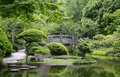 Bridge in japanese garden wooden fort worth texas Royalty Free Stock Image