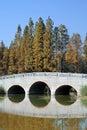 Bridge on the lake Stock Photo