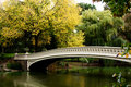 Bridge over lake in fall scenery Royalty Free Stock Photo