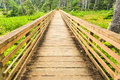 A bridge over marshy area in a forest surrounds paved walking trail Royalty Free Stock Images