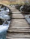 Bridge over wild river Royalty Free Stock Photo