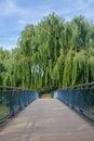 Bridge pathway with trees overhang