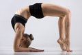 Bridge pose on elbows Royalty Free Stock Photo