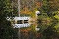 Bridge Reflections Royalty Free Stock Photo