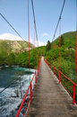 Bridge river wild Royalty Free Stock Photo