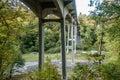 Bridge At Saltwater Park 2