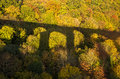 Bridge Shadow on Autumn Forest Colours Stock Photography