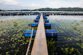 Bridge to fish farms in river Stock Photos