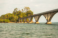 The bridge to nowhere samana bay of dominican republic Royalty Free Stock Images
