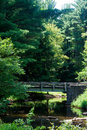 Bridge in the wilds parker dam state park pennsylvania usa Royalty Free Stock Photo