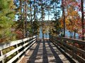 Bridge wooden shadowed and by tall oak and pine trees leading to a lake Stock Image
