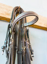 Bridle hanging horse gear detail of a in a stable Stock Photo