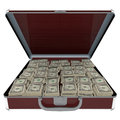 Briefcase with money d design and white background Royalty Free Stock Photography