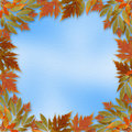 Bright autumn leaves with paper frame Stock Photo
