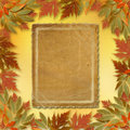 Bright autumn leaves with paper frame Stock Image