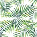 Bright beautiful green herbal tropical wonderful hawaii floral summer pattern of a tropic palm and monstera leaves watercolor