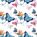 Bright beautiful sophisticated wonderful tender gentle spring tropical colorful butterflies with tropical yellow flowers pattern w