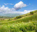 Bright beautiful summer landscape with blue sky in a green valle Stock Photography