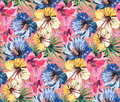 Bright beautiful tender lovely tropical hawaii floral summer pattern of a tropic light pink lily, yellow and blue hibiscus and gre Royalty Free Stock Photo