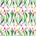 Bright beautiful vertical seamless pattern of tulips red yellow pink purple lavender flowers watercolor hand sketch Royalty Free Stock Photo