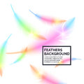 Bright bird feathers on a white background. Royalty Free Stock Photo