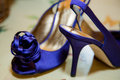 Bright blue shoes Stock Images