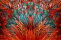 Bright brown feather group Royalty Free Stock Photo