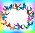 Bright butterfly blank frame Royalty Free Stock Photo